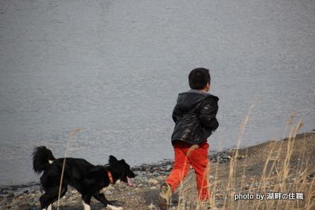 少年と黒い犬2