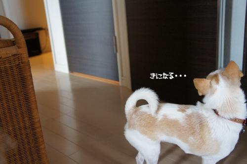 kI_FI.jpg