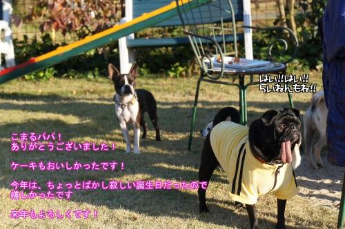 luA_P.jpg