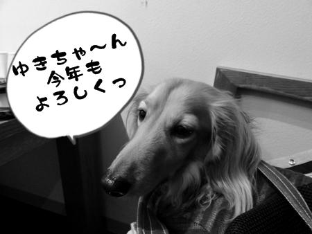 One+6.jpg