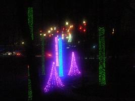 Botanical Garden-14