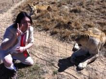 狩野英孝 VS ライオン