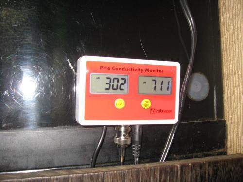本日メイン水槽 水質 伝導率