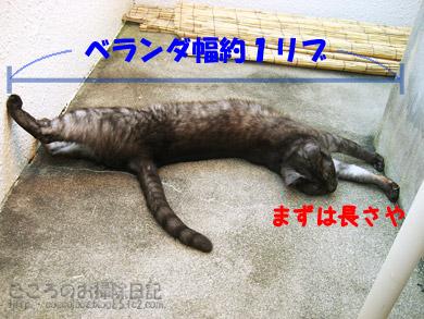 nagasa1live201109