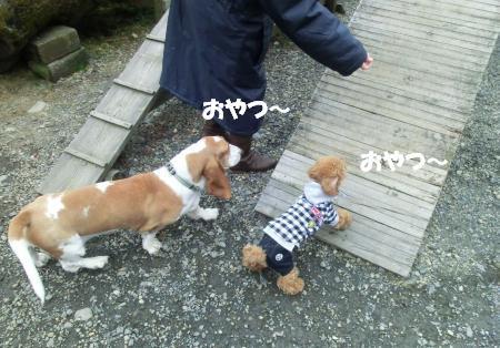 スロープ1_♪