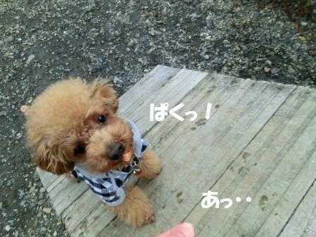 スロープ4_♪