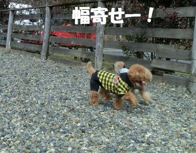 CIMG5672_convert_20120312235644☆