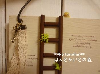 026_20120205063401.jpg