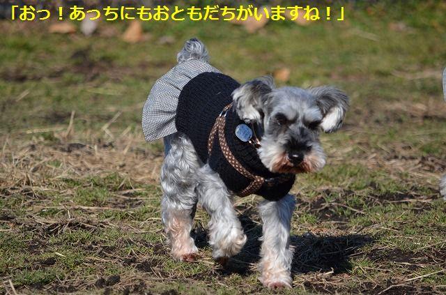 coconon_20120126_136.jpg