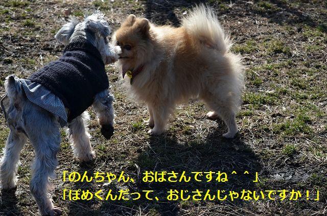 coconon_20120126_150.jpg