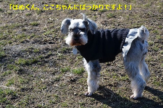 coconon_20120126_154.jpg