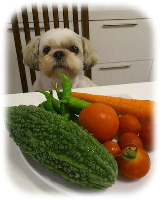 かわいいお野菜たち