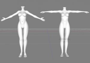 body比較