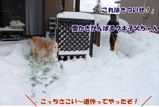 IMG_3772_R.jpg