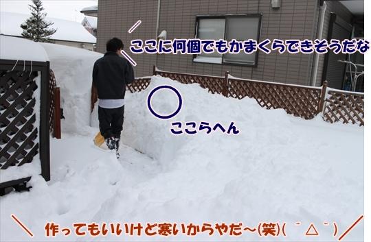 IMG_3786_R.jpg