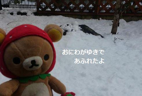 雪がいっぱいー