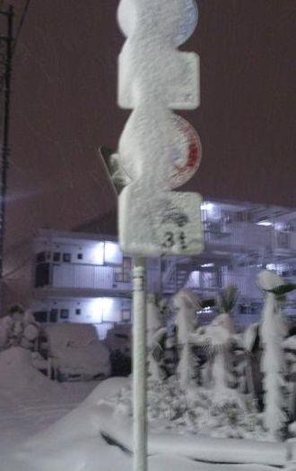 標識にも雪