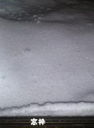 サッシに雪がー