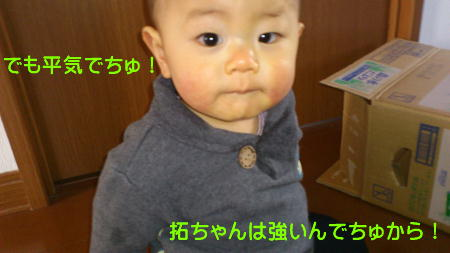 12010606_1.jpg