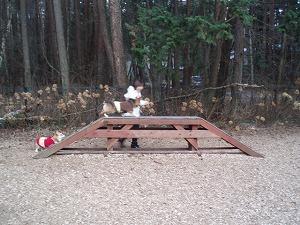 橋に登れたよ