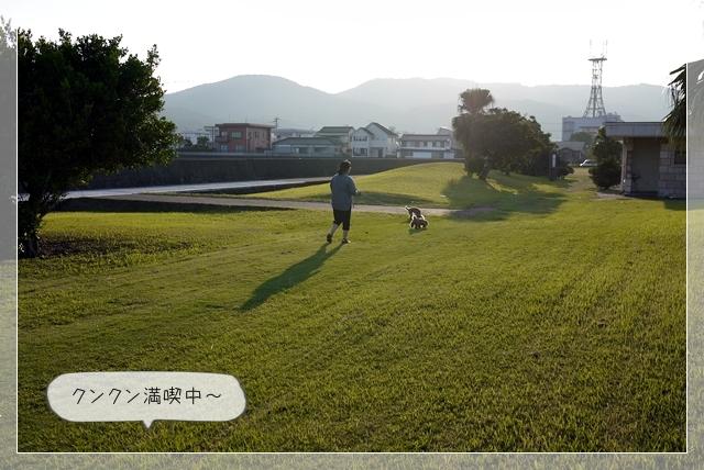 ミニ散歩06