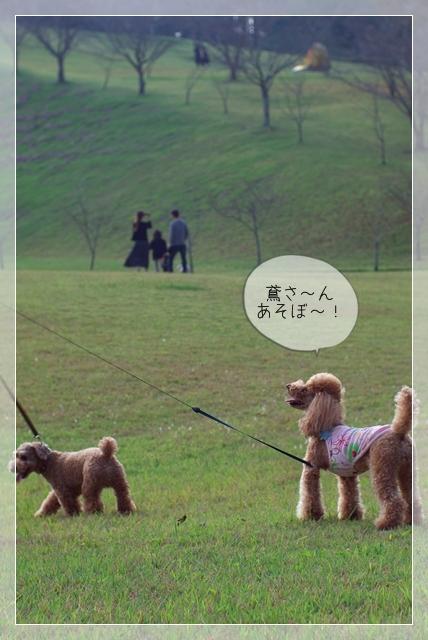 ちょっと散歩02