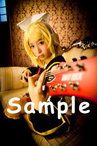 sample_rin01.jpg