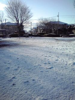 yuki2_0028.jpg