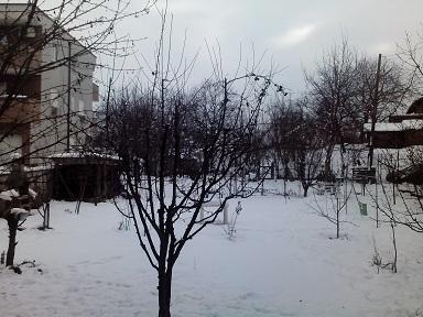 snowtoday.jpg