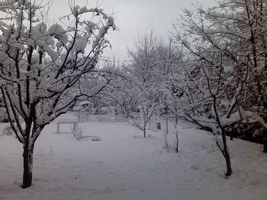 snowyesterday.jpg