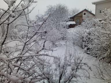 snowyesterday2.jpg