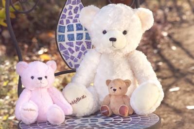 Teddy3サイズ