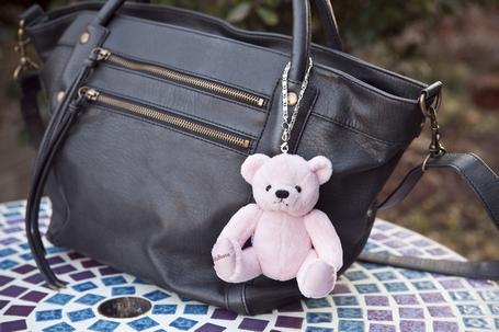 Teddy_s2