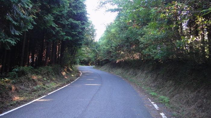 kokawa02.jpg