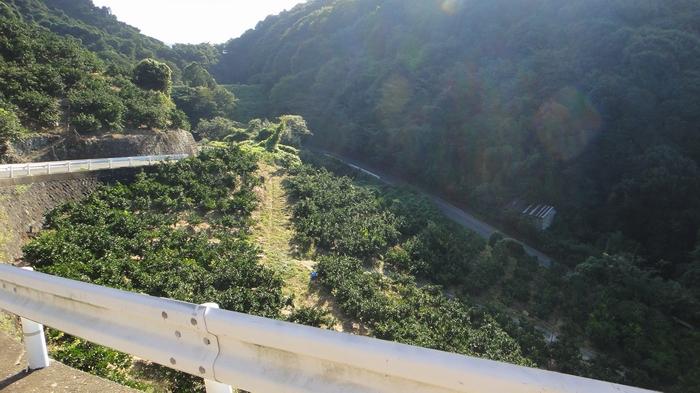 kokawa10.jpg