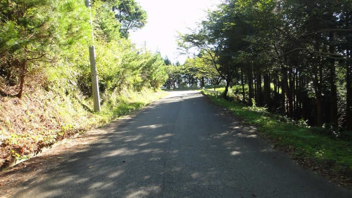 kokawa17.jpg