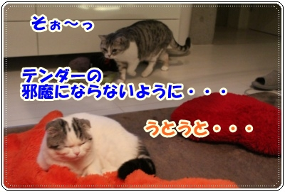 IMG_3966-004.jpg