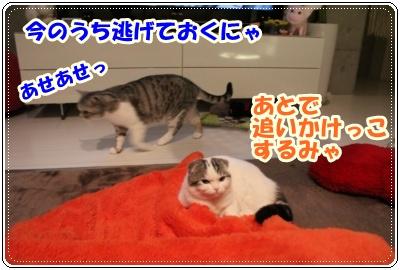 IMG_3969-007.jpg