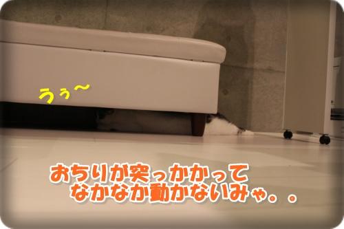 IMG_4544-002.jpg