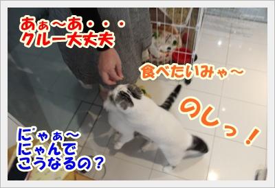 IMG_5227-006.jpg