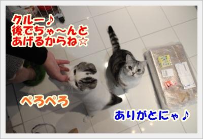 IMG_5235-007.jpg