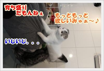 IMG_5240-008.jpg