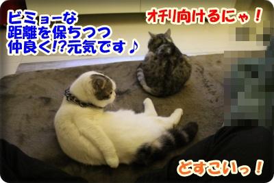 IMG_7497-004.jpg