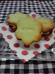 cyrilのブログ-201003042101000.jpg