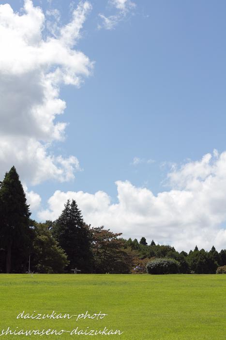 daizukan-photo-6724.jpg