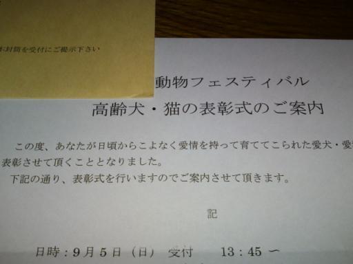 2010-09-04 17:55:58
