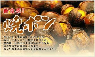 京丹波 錦市場本店 焼ポン