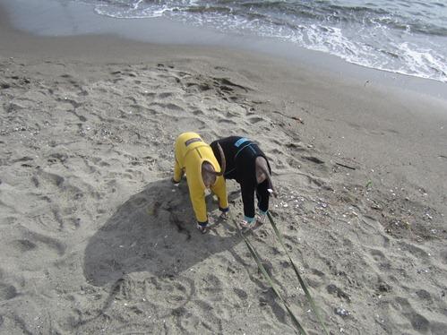 0106海の公園_04