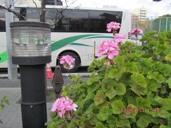 0103sumida02.jpg