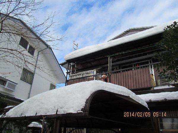 0209yuki10.jpg
